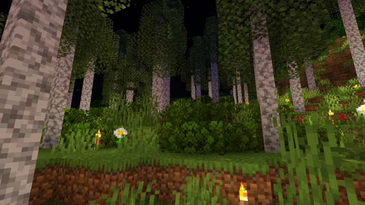 Diorite Birch Forest 1.14